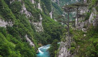The Tara River Canyon